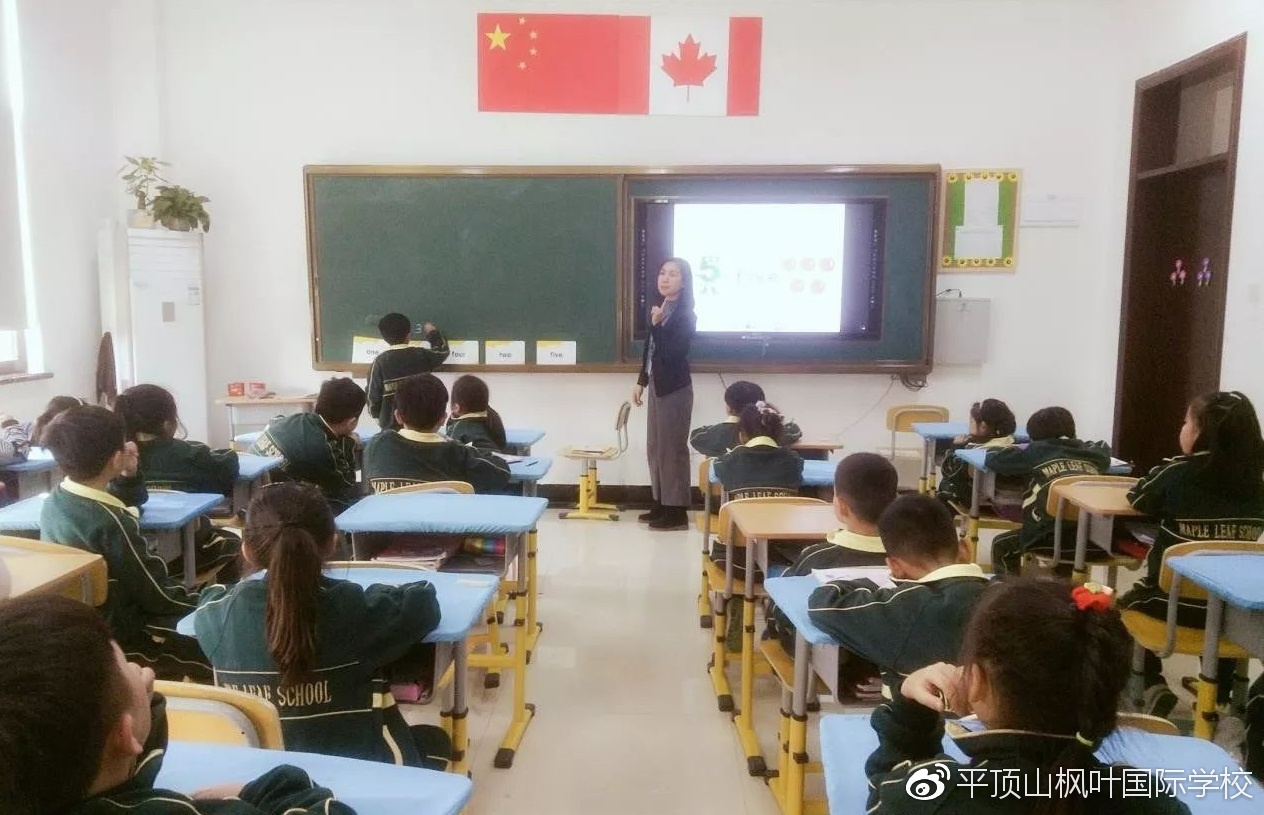 Maple Leaf International School--外教风采(二)